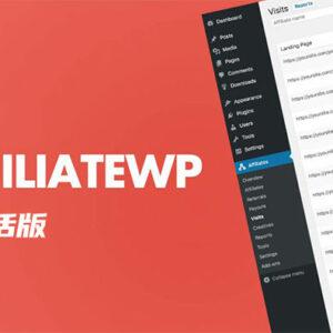 AffiliateWP v2.7.3 已激活版[含附件]
