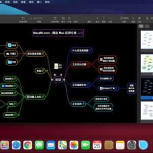 SimpleMind Pro 1.29.1 中文破解版 (轻量且强大的思维导图工具)