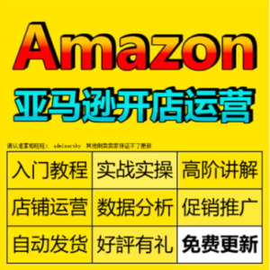 AMAZON视频培训开店教程美国亚马逊运营卖家跨境电商教程外贸课程